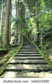 the long stone steps of the approach to the shrine