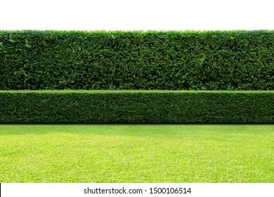 Hedge Images Stock Photos Vectors Shutterstock