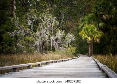 A long walk along a boardwalk over the southern marsh in Savannah, Georgia.