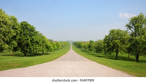 The Long Walk in Windsor Great Park in England with Horse Chestnut Trees lining the road