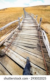 Long walkway at Yak Meadow : Jade Dragon Snow Mountain - Lijiang