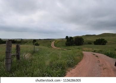 Long winding dirt road through green grass of South Dakota prairie.  Scenic prairie road.  Landscape.