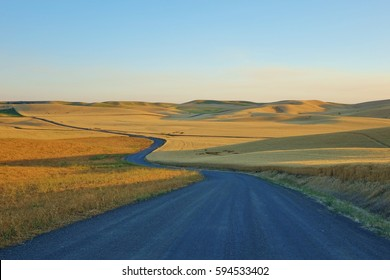 Long winding road through the rolling hills and wheat fields of the Palouse in eastern Washington state on a clear blue sky summer day.