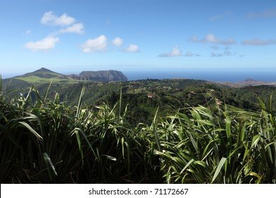 Long wood district and east landscape of St Helena