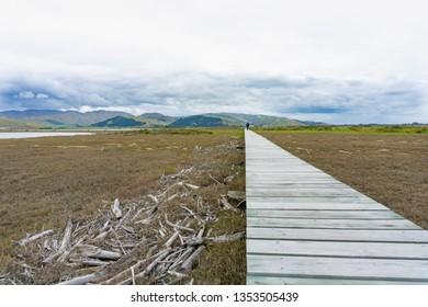Long wooden walkway disappearing into distance through wetland nature in Wairau Lagoons Marlborough New Zealand