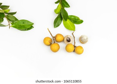 Longan, Dimocarpus longan,on the white background