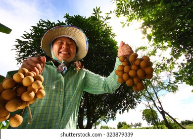 Longan farmer with smile. Welcome to taste, Thailand.