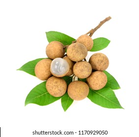 longan. fresh  isolated on white background