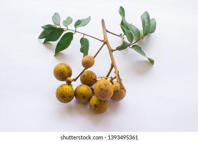 longan fruits. Fresh longan or kelengkeng isolate on white background