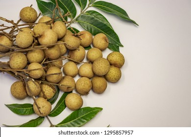 The Longan is a tropical tree. The fresh longans with the green leaves. Longans with white  background.