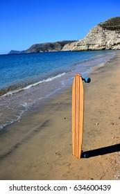 Longboard skate standing on the beach