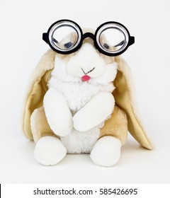 Long-eared bunny rabbit wearing silly goofy thick lens nerd glasses.