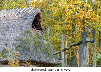 Longhouse with a roof of reeds