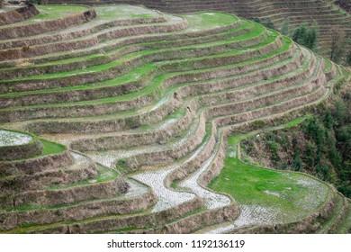 Longji rice terraces at Tian Tou village, a Yao minority village, in Guanxi, China