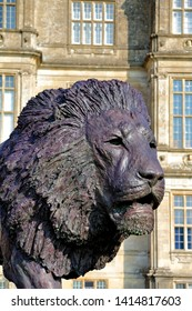 Longleat House, Wiltshire / UK - March 17 2016: Sculpture of a lion by African based sculptor Bruce Little,  commissioned by Ceawlin Thynn, Viscount Weymouth, part of the 50th anniversary celebrations