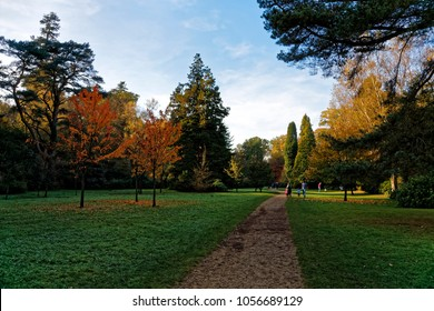 Longleat, Wiltshire, UK - October 31, 2016: Autumn colours at Heavens Gate
