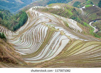 The Longsheng Rice Terraces in Guangxi, China