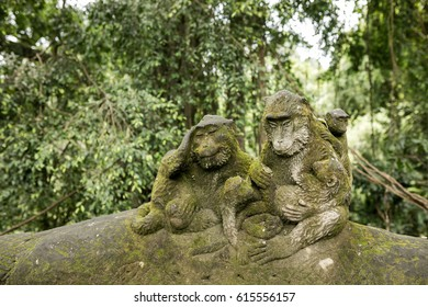 Long-tailed macaques (Macaca fascicularis) in The Ubud Monkey Forest Temple on Bali