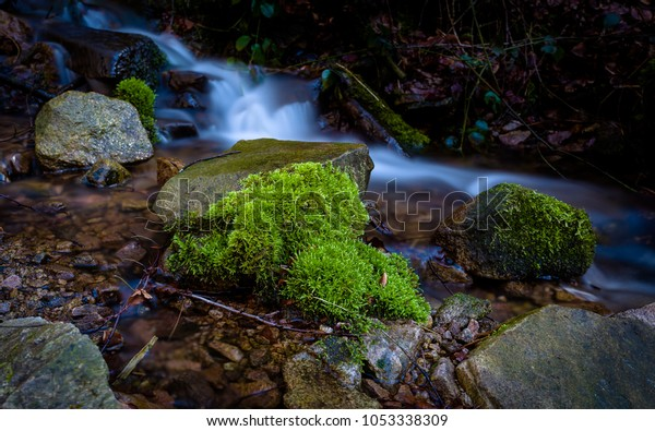 Longtime exposure from a creek with moss on a stone and a great light