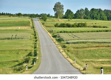 lonley country road between graindfields and meadows in lower austria, waldviertel region, in summer