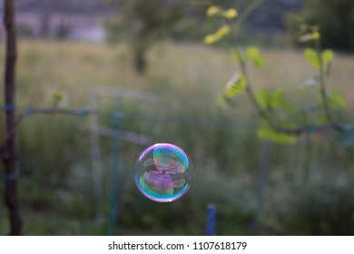 Lonley floating bubble
