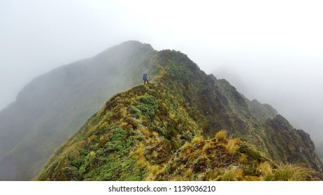 Lonley hiker on a foggy mountain ridge on Tararua Range in New Zealand