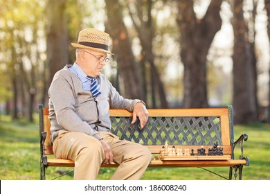 Lonley senior playing chess in park
