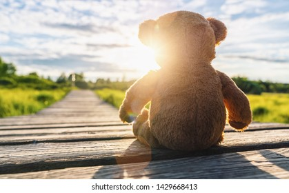 lonley Teddy bear sitting on a Wooden path at sunset. copyspace for your individual text.