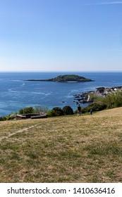 Looe Island (St Georges Island) Looe Cornwall