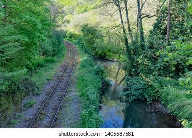 Looe Valley Line to Liskeard