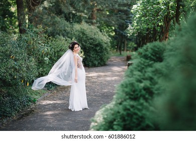Look from behind at pretty bride with long veil posing on path in park