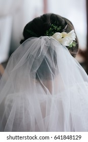 Look from behind at veil hanging from bride's hair