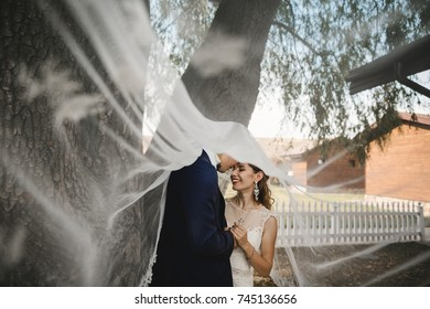 Look at bride from under the veil while she stands before old beautiful tree and hugs her groom