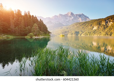 A look at the famous lake Eibsee in sunligth. Picturesque day gorgeous scene. Location resort Garmisch-Partenkirchen Bavarian alp, sightseeing Europe. Best place on earth. Explore the world's beauty.