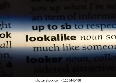 lookalike word in a dictionary. lookalike concept.