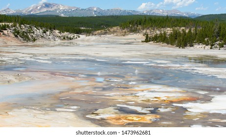 Looking across Porcelain Springs, Norris Geyser Basin, Yellowstone National Park, towards the Gallatin Mountain Range, showing geothermal activity and colors generated by thermophile bacteria.