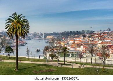 Looking across to Ribeira from the Jardim do Morro in Porto
