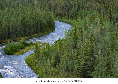 looking down from a bridge over the nenana river southwest of fairbanks, alaska showing the river flowing swiftly through a mixed forest