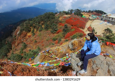 Looking Down from a cliff at Sandakphu