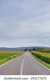 Looking down a country road between two fields in Tuscany, Italy, towards the horizon.