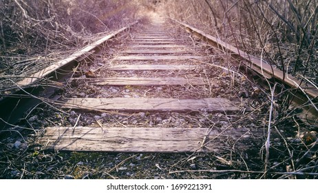 Looking down old abandoned rural railroad train tracks with overgrown weeds and brush.