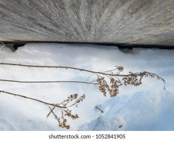 Looking down old barn boards at snow with captivating angles