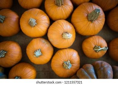 Looking down on orange pumpkins