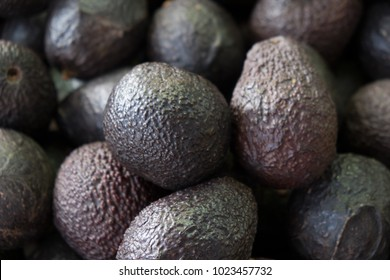 Looking down on a pile of fresh avocados at an outdoor market. Fresh local produce for sale at outdoor weekend market in Montreal.  Avocados at fresh fruit and veg market. Beautiful ripe avocados.