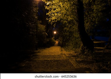 Looking down a pebble and wood beam stairway at night surrounded by trees and lit by a light post