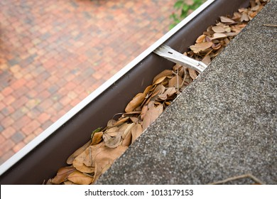 looking down at rain gutters filled with oak tree leaves