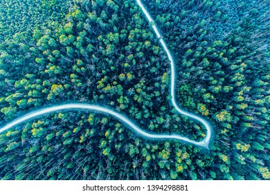 Looking down at road bend winding through forest - aerial view