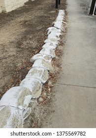 Looking down a row of spilling plastic sandbags spilling out onto the concrete and lined with eucalyptus debris by the entrance to a trail.