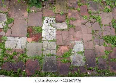 Looking down at sandstone pavers with weeds growing in the cracks