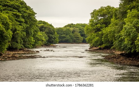 Looking downstream on a tree lined the River Dee at Barstibly near Kirkcudbright, Galloway, Scotland